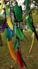 Artesanato indígena... Foto: Rê Sarmento (Rê Sarmento Photography) Tags: guarani pataxó índios bhaia karajá etnias kayapó xambioá mbya índiosdobrasil rêsarmento mamaindê festivalnacionaldaculturaindígenabertiogasp2012 tribosíndigenas kisêjdjê tupiguaranipajé