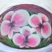 Mia Orchids 05