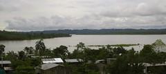 el coca (guillofernando) Tags: rio ecuador selva oriente napo loreto amazonia orellana limoncocha
