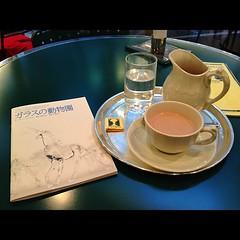 ガラスの動物園/瑛太・深津絵里・立石凉子・鈴木浩介 いちばん好きな戯曲。といっても、他はあんまり知らないけど #grass_menagerie #Tennessee_Williams #theatre_cocoon #bunkamura #shibuya #tokyo #japan #deux_magots
