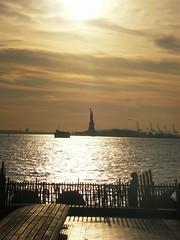 New York(241)