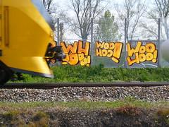 Woo Hoo! (oerendhard1) Tags: urban streetart art train graffiti rotterdam track woo vandalism hoo