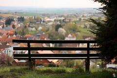 Einsamer Ausblick (TF1rst) Tags: deutschland treppe gras landschaft baum burg birke badenwrttemberg sinsheim sitzbank