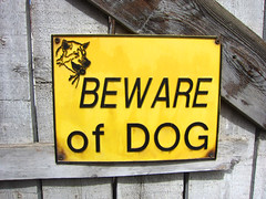 Beware of Dog (pageofbats) Tags: sign beware kensington bewareofdog