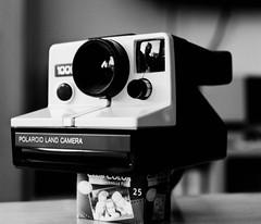 Polaroid Land Camera 1000 - One Step SX-70 (Mamiya RB67 Pro S, Kodak TRI-X 400) (baumbaTz) Tags: camera blackandwhite bw mamiya film monochrome analog germany polaroid sx70 deutschland blackwhite kodak iso400 atl trix x 49 400 land april epson sw analogue monochrom grayscale tri schwarzweiss 90mm analogphotography 1000 stade 2200 greyscale cameraporn niedersachsen lowersaxony rb67 onestep filmphotography mamiyarb67pros kodaktrix400 jobo fpp v500 sekor polaroidlandcamera1000 adox filmisnotdead autolab 2013 analoguephotography camporn kutenholz filmforever mamiyarb67professionals atomal polaroidonestepsx70 landcamera1000 adoxatomal49 filmphotographyproject believeinfilm atl2200 20130413