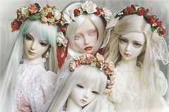 Our ladies (AyuAna) Tags: ball doll little chloe luna monica bjd dollfie eris limos jointed iplehouse ordoll nyxdoll