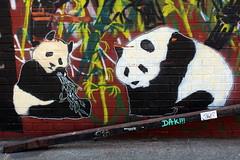 Brooklyn - Bushwick: Streetart (wallyg) Tags: nyc newyorkcity streetart ny newyork brooklyn graffiti stencil panda gothamist bushwick kingscounty