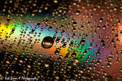20140304_2945_CD-art (Rob_Boon) Tags: waterdrops cdart waterdruppel robboon