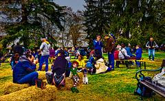 A magical sunday at castle park (Marco Trov) Tags: park street italy parco castle strada italia cuneo manta hdr castellodellamanta canong1x marcotrov