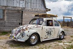 Herbie Rides Again (Eric Arnold Photography) Tags: old city vw barn bug volkswagen logo utah ut rust photoshoot farm beetle clear saltlake surfboard 53 herbie patina roofrack type1 2016