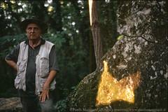 120603-20-Caprione-Liguria-Laspezia-21-Giugno-Farfalla-di-Luce-dorata-Solstizio-d-estate-light-golden-butterfly-summer-solstice-june.jpg (Paolo_Maggiani) Tags: 2003 calzolari caprione laspezia montemarcello farfalla farfalladiluce megalite