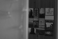 The Bedroom Series (ebonyteeceround) Tags: light cactus bw white black reflection water glass wall cacti canon glasses book experimental 85mm books indoors owl inside walls gaze