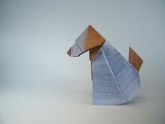 Muttley Dog - Raymond Yeh (Rui.Roda) Tags: dog chien cão origami perro cachorro raymond papiroflexia yeh muttley papierfalten