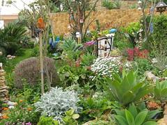 Im Garten 005 (wilhelm.haardt) Tags: antjes blumen peniscola imgarten antjesblumenpracht