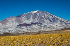 Volcan Incahuasi (cuiti78) Tags: argentina de san francisco paso catamarca volcan incahuasi