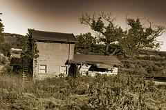 """Abandonded 1930's Ranch House (1) (Anthony """"Tony G"""" Gliozzo (Web Site is ocbirds.com)) Tags: ranch house abandoned camino farm anthony capistrano yabbadabbadoo gliozzo saddelback"""