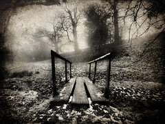 Prestbury Walk -- In Mist (Oliver Wood Photography) Tags: mist weather landscape cheshire walk flickraward prestbuey