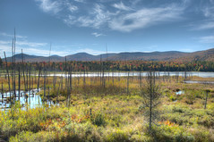 Indian Summer in Adirondack State Park (Daniel J. Mueller) Tags: park summer ny newyork mountains tree grass clouds pond state forrest indian upstate foilage hdr adirondack 7xp d3s