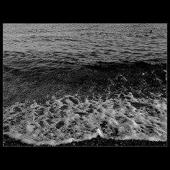 Seashore (Osvaldo_Zoom) Tags: sea summer beach nikon shore d80