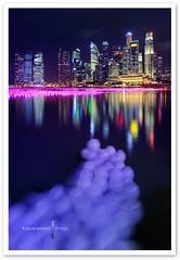 Singapore - Marina Bay (TOONMAN_blchin) Tags: singapore marinabay toonman mygearandme mygearandmepremium mygearandmebronze mygearandmesilver ringexcellence flickrstruereflection1 flickrstruereflection2