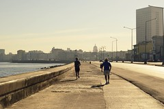 morning run (The Globetrotting photographer) Tags: morning havana cuba run habana malecn havanacuba avana  habanacuba  havanastreetscene