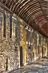 Cathedral Cloister (Clive1945) Tags: chichester d5000 oloneo