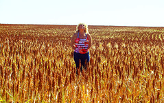 Walk in Fields of Gold (osvaldoeaf) Tags: brazil portrait sky woman nature girl field yellow brasil america mom landscape day open south sorgo goinia spaces gois
