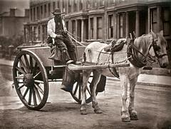 Anglų lietuvių žodynas. Žodis watering-cart reiškia n = water-cart 1 lietuviškai.