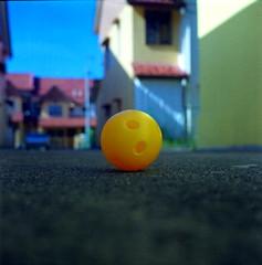 B* (alemershad™) Tags: 120 6x6 tlr film yellow analog ball mediumformat kodak bokeh squareformat malaysia bowling mf analogue manual yashica kajang bowlingball kuning twinlensreflex expiredfilm yashicamat124g filem iso160 ilovefilm alem kodakektacolor yashinon80mm kajangselangor vescan alemershad 120my canonscan9000f tamanpuncaksaujana