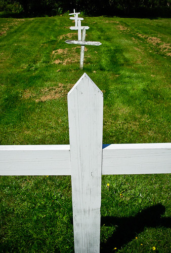 The Irish Cemetary, Grosse Île_3