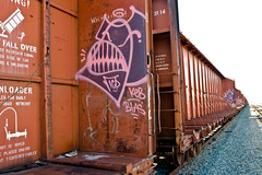 Toro (TheHarshTruthOfTheCameraEye) Tags: california ca up train graffiti mta northern toro freight throw icp throwup sts throwie benching
