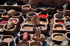 Tanneries-Fes- Morocco (georgia-l (Busy)) Tags: africa color colour leather photography photo places morocco fez medina fes tanneries d5000 tanneriesfes nikond5000
