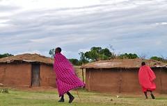 Masai village (Hctor del Hoyo) Tags: africa kenya culture traditions tribal safari mara tribes tribe ethnic kenia masai cultura ethnology tribu tradiciones etnia tribus ethnie hectordelhoyo
