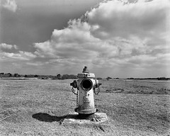 Greenham Common Negative Scan Fire Hydrant (Rebecca Sharplin Hughes) Tags: white black abandoned mamiya film field army infrared medium format common derelict newbury nato airfield rb67 greenham film:iso=400 developer:brand=agfa film:brand=rollei agfar09oneshot developer:name=agfar09oneshot rolleiinfraredir film:name=rolleiinfraredir400 filmdev:recipe=8414