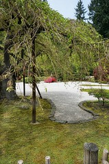 "Another view of the ""Flat Garden"" at the Portland Japanese Garden (mharrsch) Tags: plants oregon garden portland landscape japanese portlandjapanesegarden mharrsch"