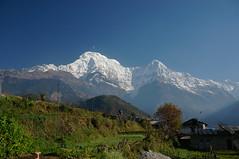 Annapurna from Ghorepani (Andrew and Annemarie) Tags: nepal trekking trek abc himalaya annapurna himalayas annapurnasanctuary file:md5sum=9393aecddcb6ee24a41eee1483525d57 file:sha1sig=82813c2f4a61e990dfafc331f63e73bd2ff1c3b3