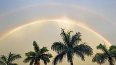 Double Your Fun With Nature (soniaadammurray - SLOWLY TRYING TO CATCH UP) Tags: trees sky sun beauty look rainbow appreciation digitalphotography