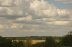 Motherland Belarus (Natali Antonovich) Tags: sky history nature landscape spring belarus oldest oldworld oldtime romanticism novogrudok navahrudak motherlandbelarus enamouredspring