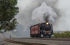 Gallop (Dobpics O'Brien) Tags: train victorian engine rail railway australia victoria steam testing special locomotive railways a2 vr srv steamrail a2986