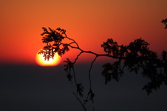 IMG_6967 (sjj62) Tags: sunset seascape doorcounty sunsetting doorcountywi 40d ellisonbaywi ellisonbluffstatenaturalarea