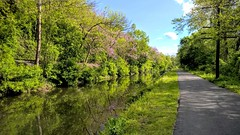 Along the Lehigh Canal (yumievriwan) Tags: spring pennsylvania cana lehighvalley lehigh