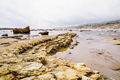 15-04-26 Palos Verdes (chichai.empire) Tags: ocean beach nature sony socal tidepools palosverdes sonyalpha mirrorless sonya6000