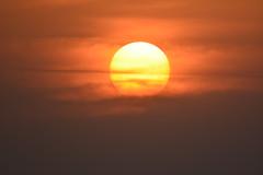 Crepusculo no Japao . (marcelo.nakazaki) Tags: sunset pordosol sun sol nature japan asia natureza nagoya crepusculo japon japao aichiken astrorei