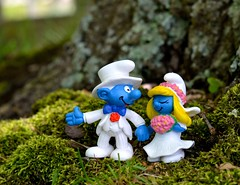 Chapter 2 (linda_lou2) Tags: wedding toy celebrations smurfs week19 odc 52weeksof2015 categorystorytelling themechapter2