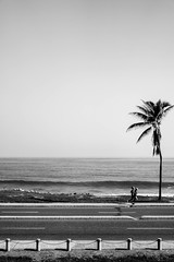 jogging in the Caribbean (1jonathan1) Tags: life road street morning sea sky people blackandwhite naturaleza seascape tree love nature water skyline arbol photography monocromo mar view wave daily cielo caribbean jogging horizont ola horizonte oceano