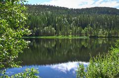 Greener Shores (kaeley.warren) Tags: reflections rivers hdr