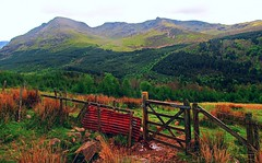 Wild Ennerdale. (A tramp in the hills) Tags: lakedistrict cumbria ennerdale