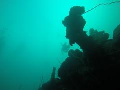 Wreck diving, Palau.