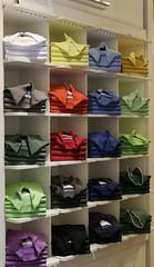 Polo Shirt (Roelie Wilms) Tags: poloshirt siena italy itali italia