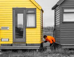 Yellow Popped Beach Hut (TD2112) Tags: wood beach coast wooden dorset beachhuts mudeford mikebrowne colourpopped colorpopped tonyduke